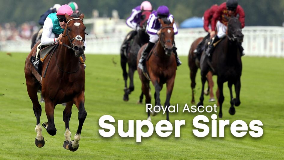 The Royal Ascot Super Sires