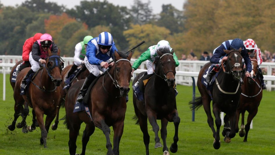 Muhaarar was exceptional in his final race, the Champion Sprint