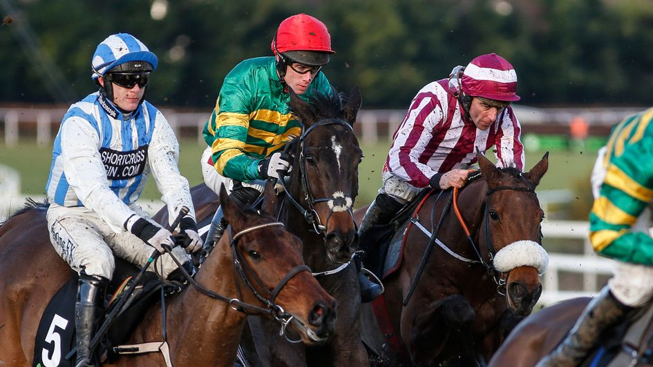 Edwulf (red cap) in among horses during the Irish Gold Cup
