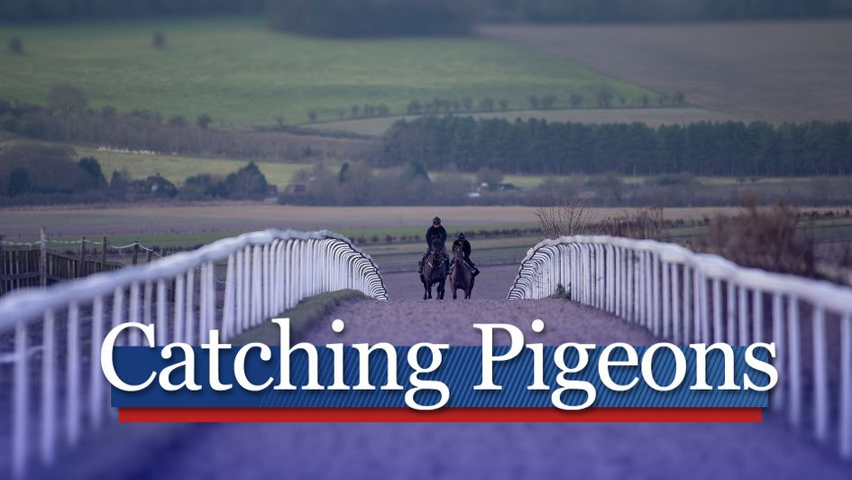 Get all the latest whispers from the major racing training centres