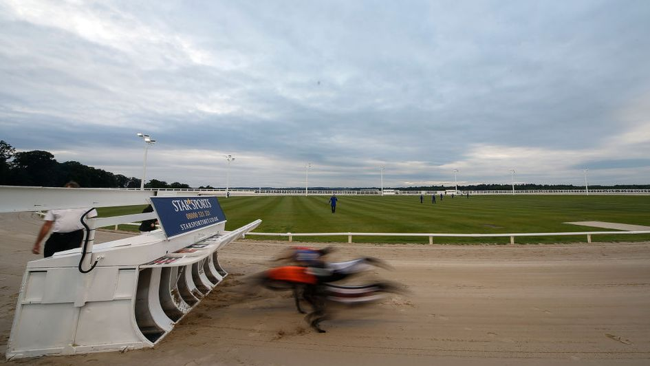 Action from last year's Greyhound Derby - who will reign at Nottingham this time?