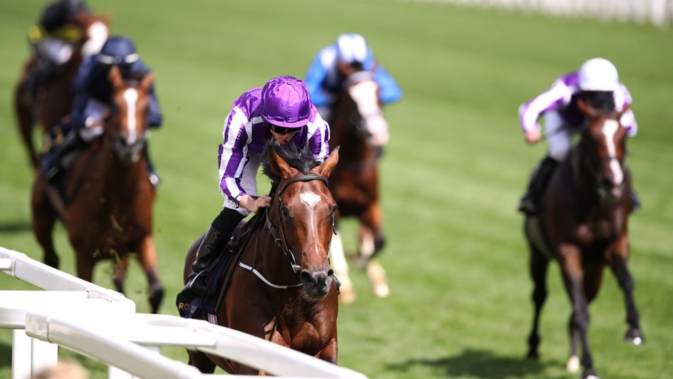 Kew Gardens looks every inch a St Leger candidate as he wins the Queen's Vase
