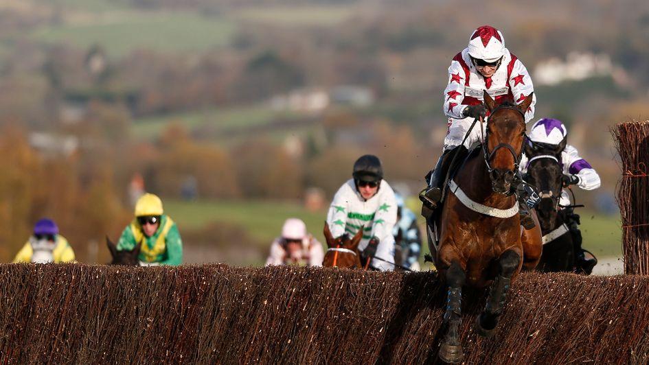 Doitforthevillage wins at Cheltenham