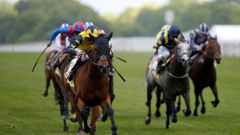 Desert Encounter wins at Ascot