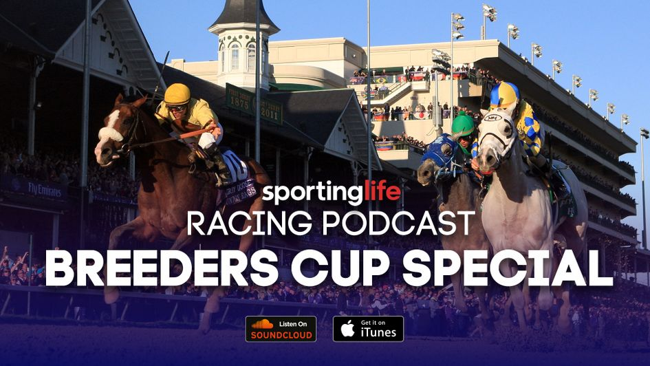 Listen to our Breeders' Cup Podcast