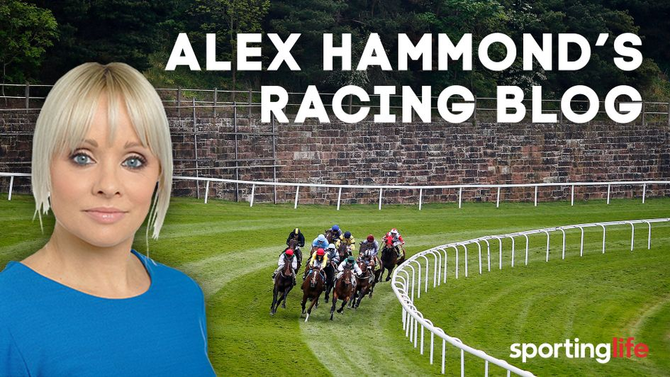 Check out Alex Hammond's latest blog