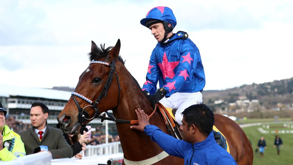 Cue Card and Paddy Brennan return after pulling up