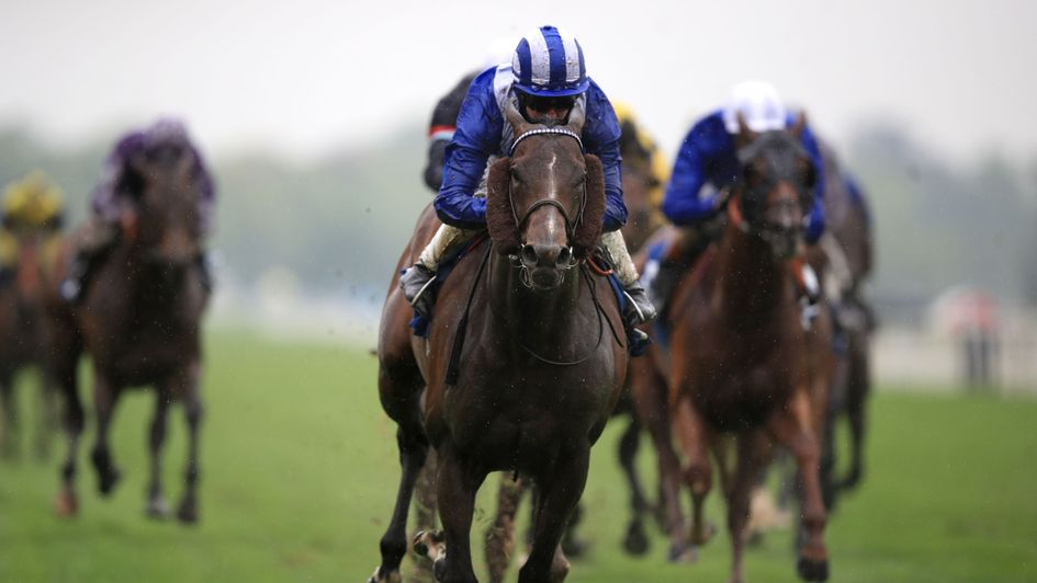 Duke of york stakes betting online