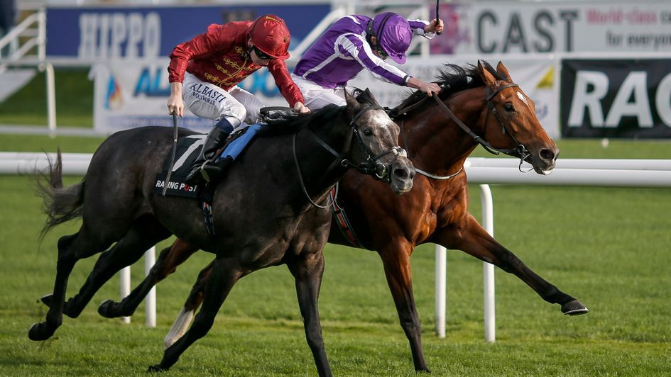 Saxon Warrior (far side) gets back up