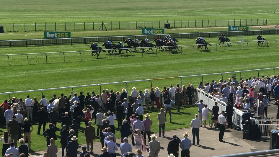 The field for the Wood Ditton race on the Rowley Mile