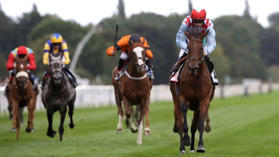 Here And Now wins at York