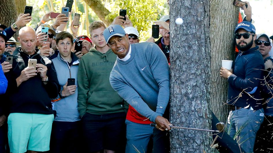 Tiger Woods plays out of the trees