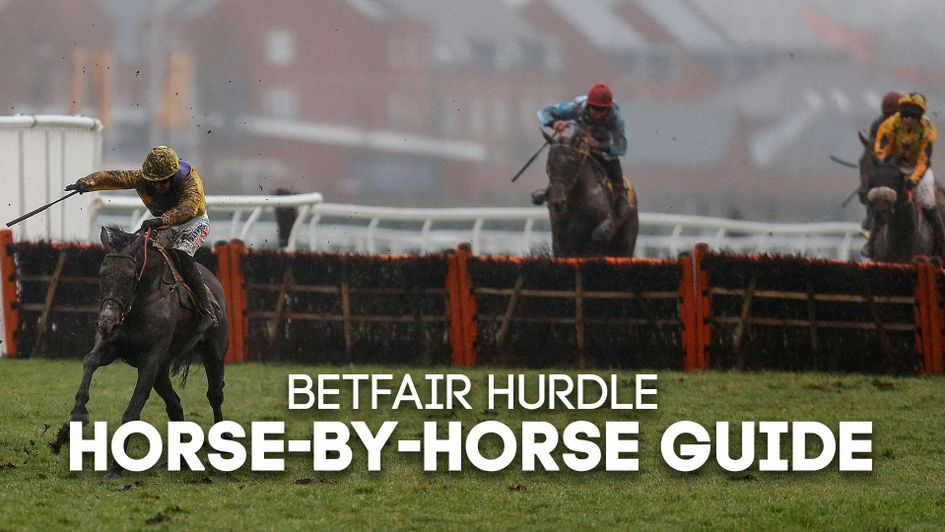Horse-by-horse guide to Saturday's Betfair Hurdle