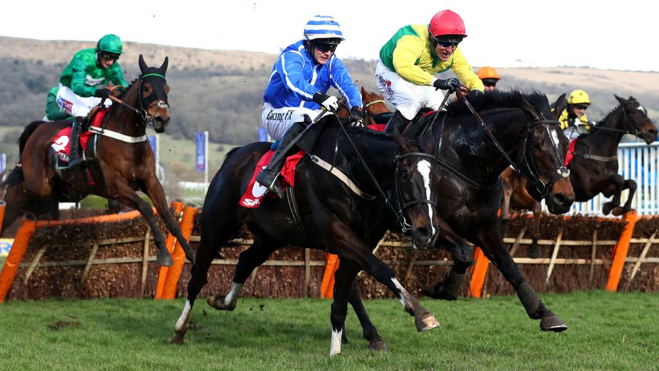 Penhill and Supasundae do battle at Cheltenham