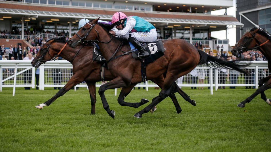 Horse-by-horse guide, form, tips and odds for the Solario