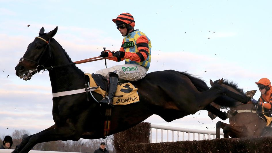 Might Bite in action at Haydock