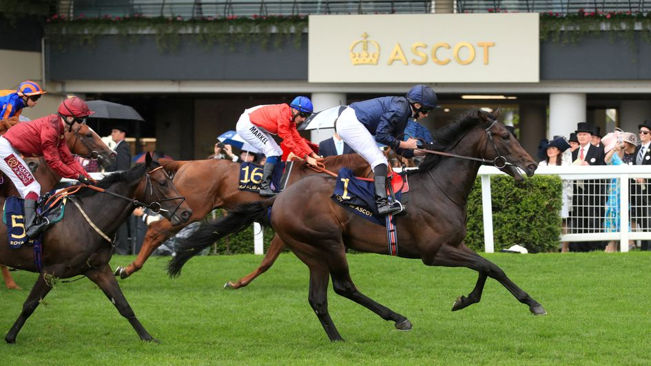 Arizona wins the Coventry Stakes from Threat