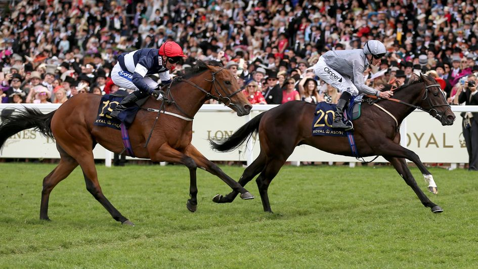 Soldier's Call beats Sabre in the Windsor Castle