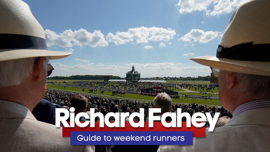 Check out Richard Fahey's thoughts right here