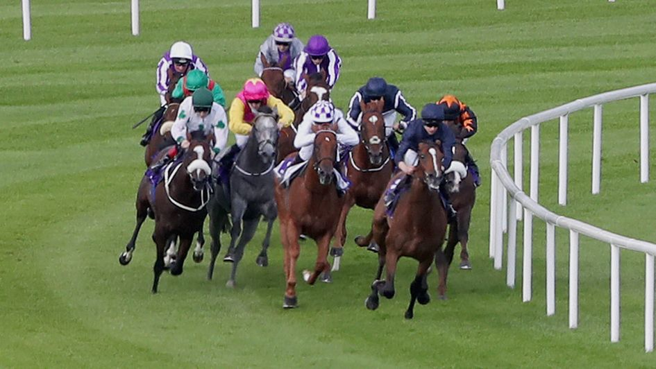 Nelson leads the field in the Willis Towers Watson Champions Juvenile Stakes