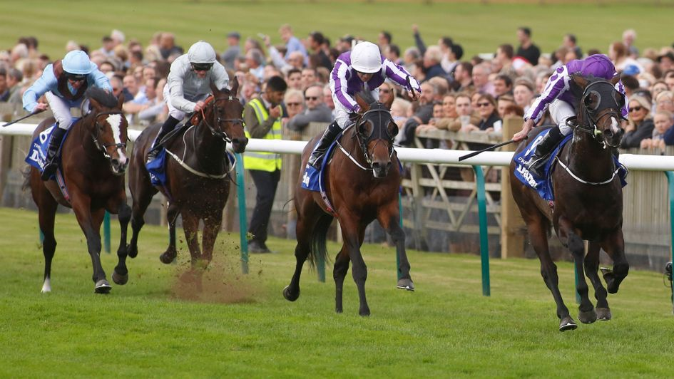 U S Navy Flag leads stablemates Mendelssohn and Threeandfourpence (l) in the Dewhurst
