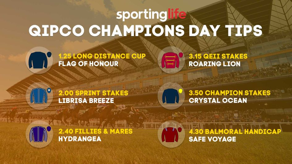 Our tips for the big day at Ascot