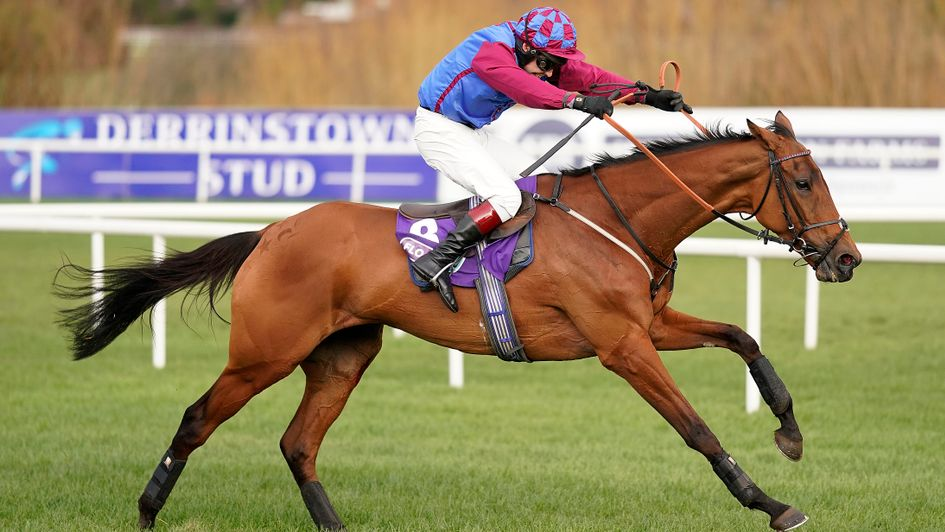 La Bague Au Roi in full flight at Leopardstown