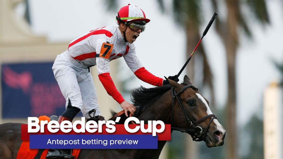 Breeders Cup Guide Including Full Schedule Of The Races