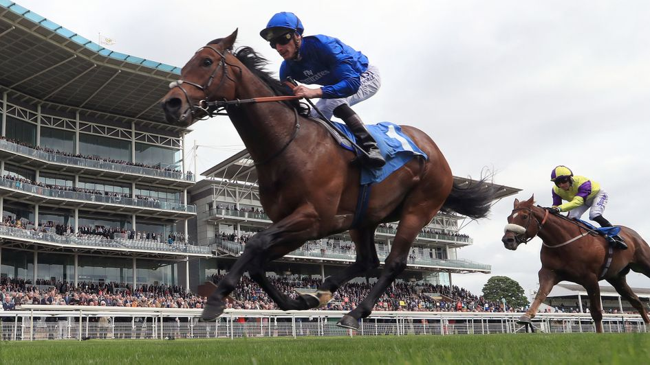 Harry Angel returns in style at York