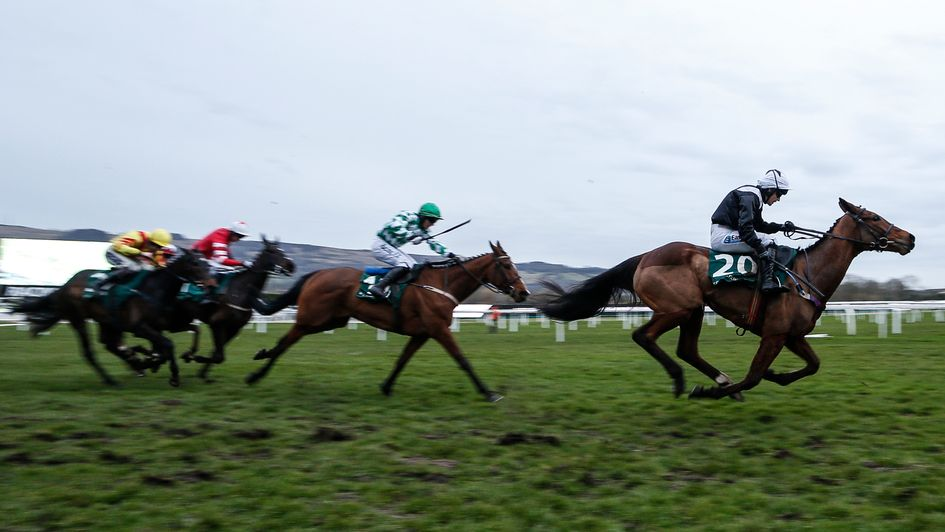 Relegate (right) en route to winning the Champion Bumper