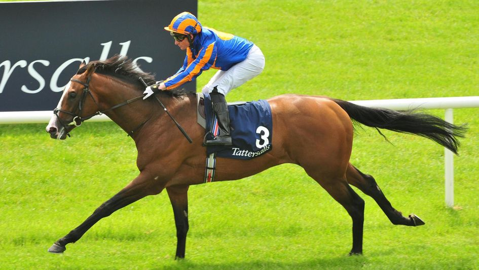 Lancaster Bomber scores at the Curragh