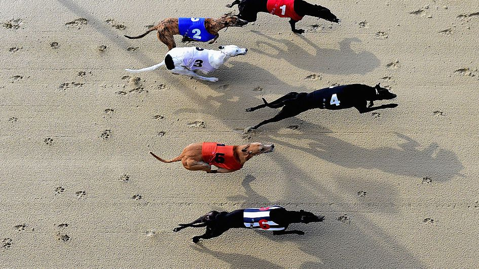 An announcement on greyhound racing is expected soon