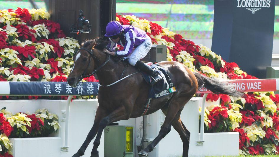 King Aidan Obrien Crowned In Hong Kong As Highland Reel Lands The
