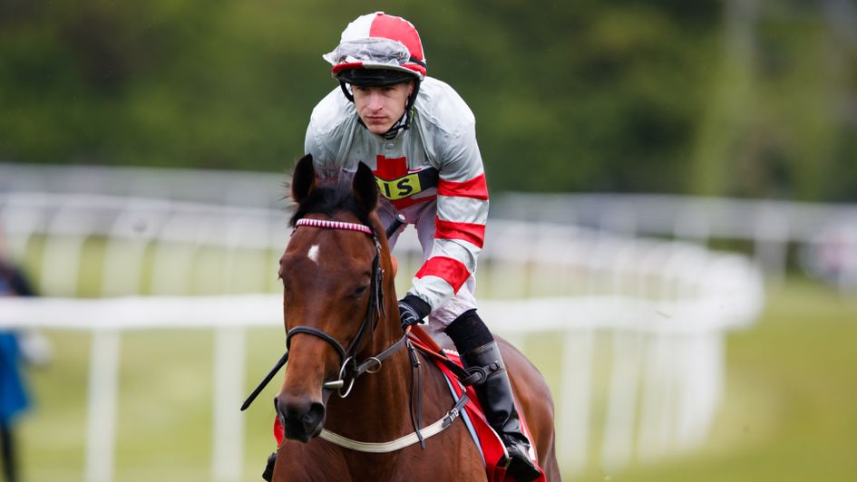 Knight To Behold - bids to become first Investec Derby winner from stall two