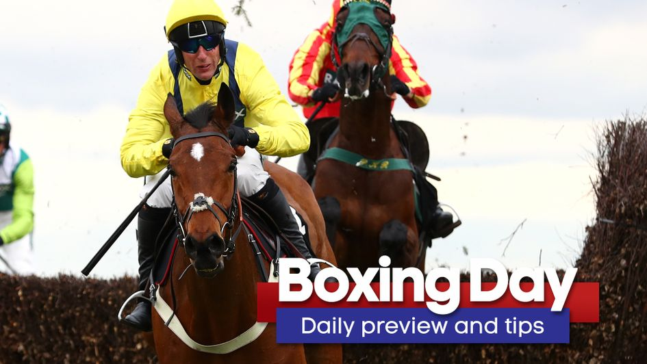 horse betting tip of the day