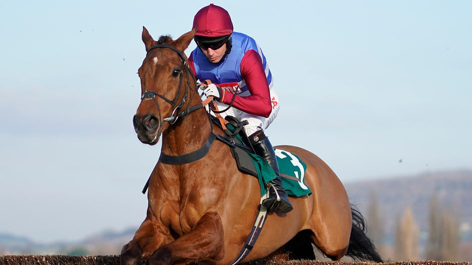 The Worlds End impresses at Cheltenham