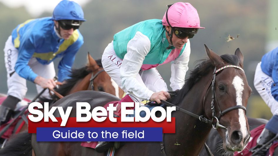 Welcome to Yorkshire Ebor Festival Guide: Tips, videos