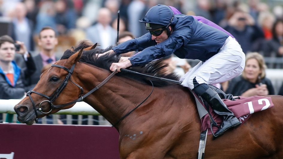 Seamie Heffernan urges Rhododendron past Hydrangea and Ryan Moore