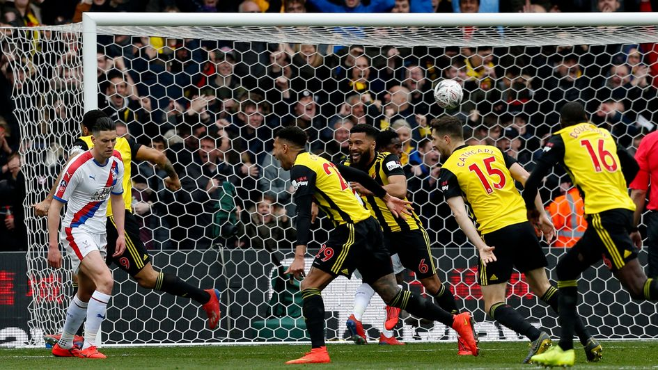 Celebrations for Watford after Etienne Capoue's goal against Crystal Palace in the FA Cup