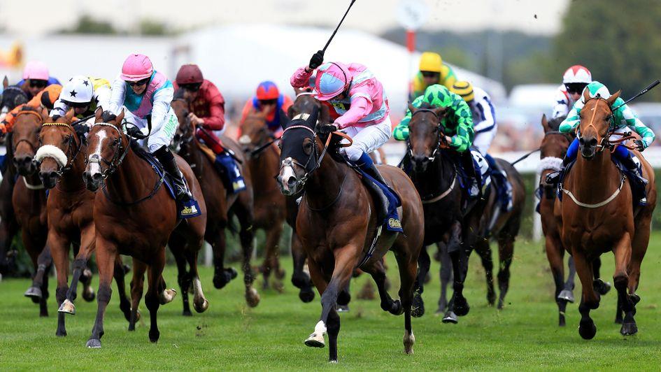 horse racing betting odds tomorrow lyrics