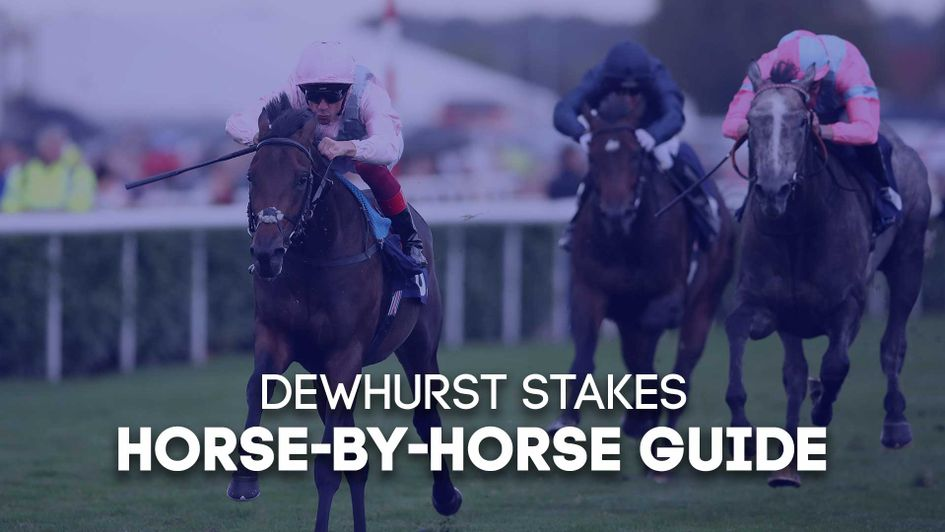 We run through every horse for Saturday's Dewhurst Stakes