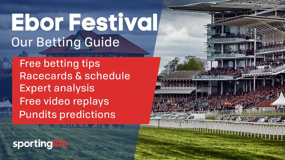 Ebor Festival Guide Race Schedule Times Free Betting Tips