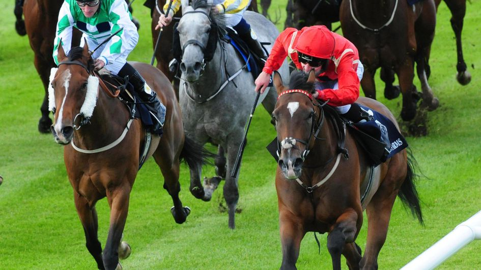 Ice Age is heading for the Ayr Gold Cup