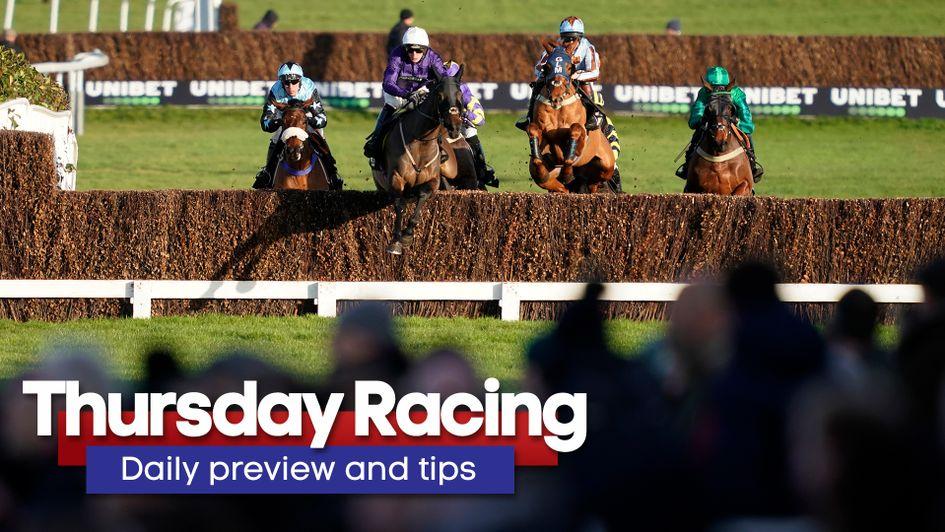 Free horse race betting tips money line betting nba finals
