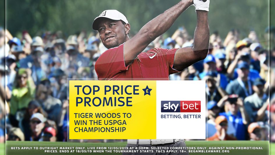 Top price on Tiger Woods in the US PGA