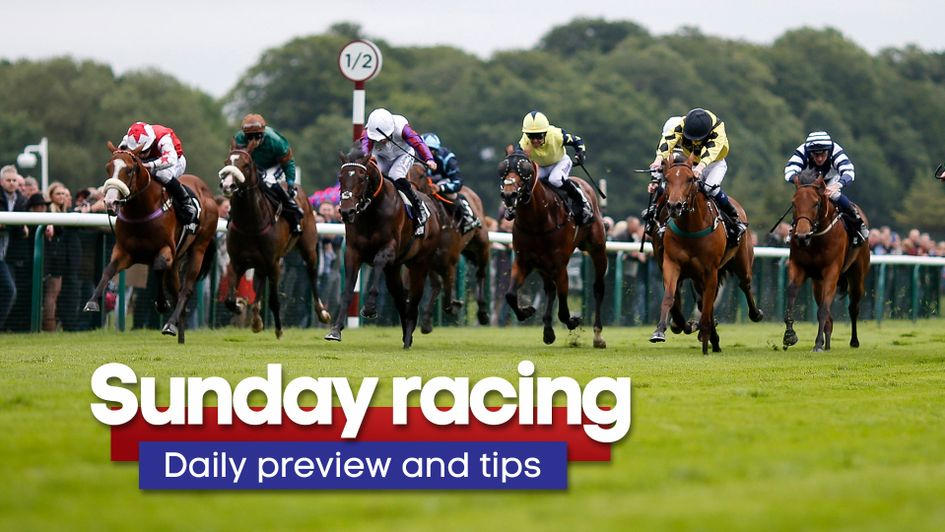 Check out the latest daily racing preview