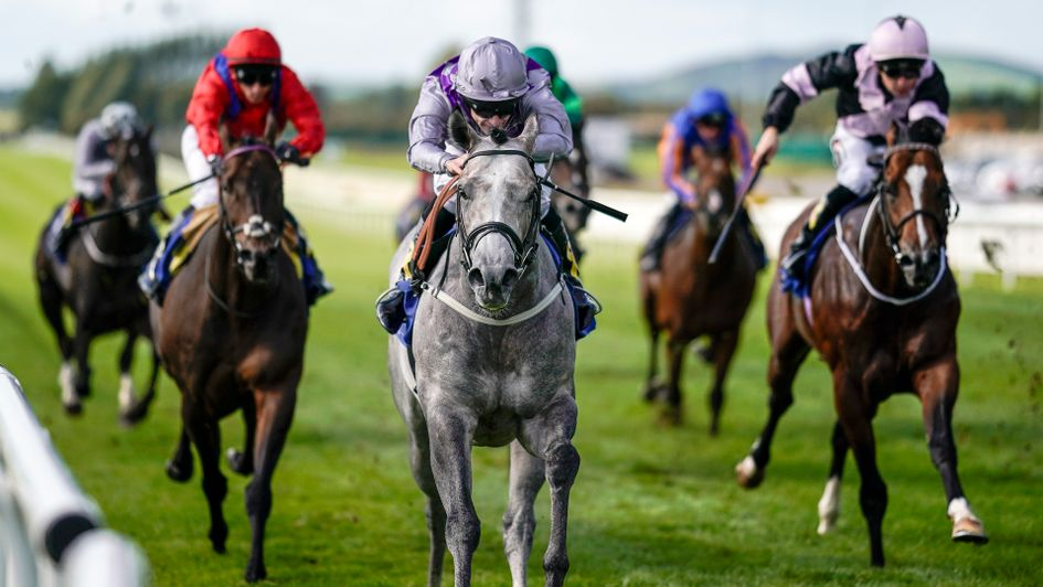 Havana Grey on his way to victory at the Curragh