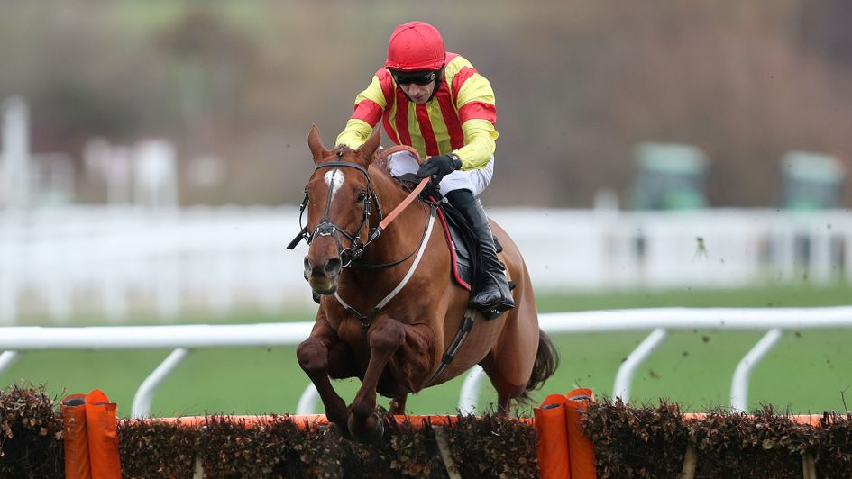 Jarveys Plate wins at Cheltenham