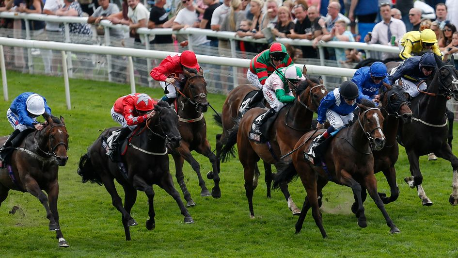 Sky Bet Tips And Naps - image 4