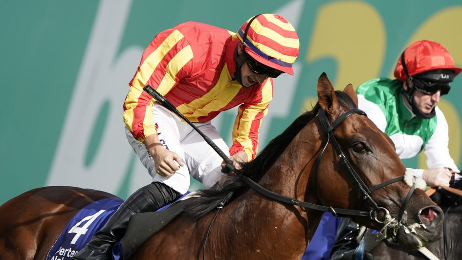 Horse racing betting odds tomorrow lyrics how to bet on spelling bee